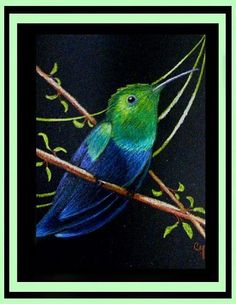 Art: Green-throated Hummingbird by Artist Cyra R. Cancel
