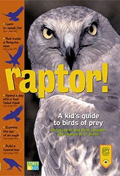 Raptor! A Kid's Guide to Birds of Prey by Christyna M. Laubach http://www.amazon.com/dp/1580174450/ref=cm_sw_r_pi_dp_cnVhub06HCP9A- Nathan