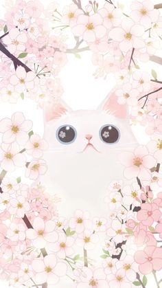 iphone wallpaper cat Cat and Cherry Blossoms Wallpaper for iPhone Iphone Wallpaper Cat, Tier Wallpaper, Cute Cat Wallpaper, Kawaii Wallpaper, Animal Wallpaper, Wallpaper Backgrounds, Cherry Blossom Wallpaper Iphone, Disney Wallpaper, Wall Wallpaper