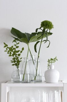 l'eau dans la decoration interieure | 17 Best images about Passover Seder on Pinterest | Glass vessel, Ferns ...