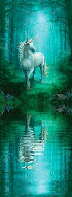 Anne Stokes : Art Gallery Forest unicorn Part of a new set of unicorn paintings.This is a forest scene with a smaller creature with cloven hooves and long mane. More like the look of the classic historically described unicorns. Unicorn And Fairies, Unicorn Fantasy, Unicorns And Mermaids, Unicorn Art, Magical Unicorn, Unicorn Painting, Magical Creatures, Fantasy Creatures, Unicorn Pictures