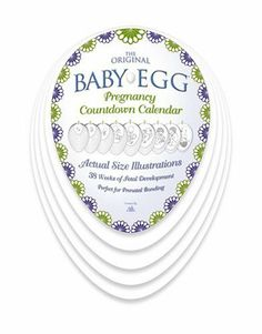 """BABY-EGG Countdown Calendar - saw this at the midwife's ofc yesterday and it is AWESOME! Sketches show baby at ACTUAL size each week - great for showing the siblings. :) """"How big is my baby? Parenting Fail, Parenting Teens, Parenting Quotes, Pregnancy Countdown, Pregnancy Calendar, Hard Quotes, Mom Quotes, Eggs For Baby, Respect Life"""