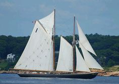 """""""Bluenose II"""",  canadian fishing schooner"""