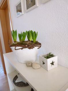 13 besten flowers basically bilder auf pinterest blumen pflanzen erdbeeren und farben. Black Bedroom Furniture Sets. Home Design Ideas