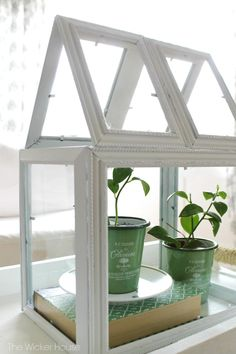 DIY Greenhouse Terrarium using Picture Frames