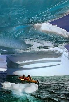 Glacier Bay National Park,Alaska.