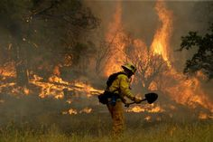 Several wildfires blacken dry California's golden hills - Times Union