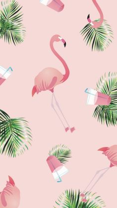 24 Ideas for wallpaper rose backgrounds wall papers Flamingo Wallpaper, Flamingo Art, Summer Wallpaper, Pink Wallpaper, Galaxy Wallpaper, Disney Wallpaper, Pattern Wallpaper, Iphone Background Wallpaper, Aesthetic Iphone Wallpaper