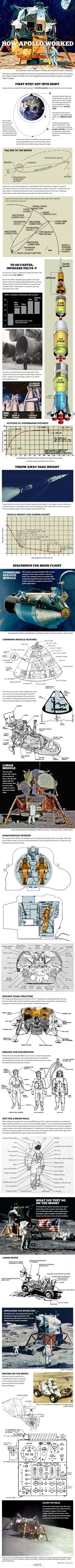 The Apollo Moon Landings: How They Worked (Infographic)