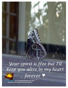 Spirt is free a poem | The Grief Toolbox