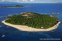 Cousin Island Special Reserve in Seychelles (Martin Harvey)