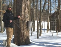 Maple Sugar Festival & Pancake Breakfast presented by Bob Evans. March 12 @ 10:00 am - 4:00 pm. Join us March 12, 13, 19 & 20, 2016 at Hale Farm & Village for the Maple Sugar Festival and Pancake Breakfast.  Enjoy a pancake breakfast compliments of Bob Evans Restaurants and then head out into the Sugaring Camp to learn about tree tapping, the maple sugar process and experience oxen demonstrations. View period arts and crafts.