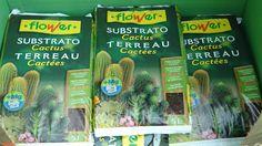 Disposem de terres específiques. En aquesta fotografia sacs de substrat per cactus i plantes crases.