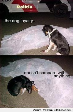 its sad but its true