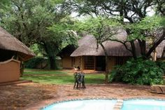 20 Best Game Farm South Africa Images Cattle Farming
