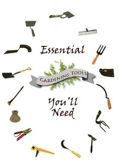 These are the essential tools that you should own to get your gardening done with ease. It's also a good beginner list of garden tools that will give you a great foundation to help create your beautiful garden. Garden Spade or Shovel: You will certainly need a spade to dig up your beds or to…