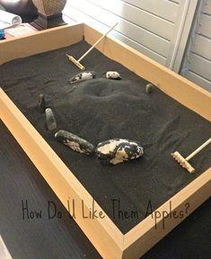 Diy Zen Garden Super Easy How Do U Like Them Apples Man Crafting