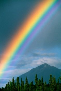 Like the appearance of a rainbow in a cloud on a rainy day, so was the appearance of the brightness all around it. This was the appearance of the likeness of the glory of the LORD.  Ezekiel 1:28