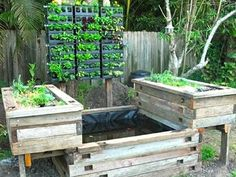 Newly installed aquaponics system with vertical herbs and horizontal growbeds for vegetables, with the fishpond centre. © Ecolicious Link