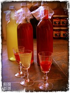 Adventures in home brewing- Fruit-infused vodka liqueurs, cherry-cinnamon-vanilla brandy & flavored meads. What to try first!