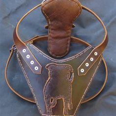 Custom Leather Harness