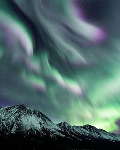This photo is brought to you by - She beautifully captured the Aurora Borealis from Yukon, Canada! We've seen this incredible phenomenon many times and easily see why its high on everyones 🇨🇦 bucket list. Yukon Canada, Newfoundland, Aurora Borealis, Northern Lights, Bring It On, Bucket, The Incredibles, Times, Travel
