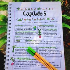 "Eli ✨ en Instagram: ""Apuntes de hoy. 🌿🙃 . . . . . . . . . . . #chicatumblr #notebook #apuntesbonitos #studygram #study #apuntes #studygrammexico #studygrammers…"""