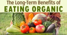 Organically grown foods have a higher number of antioxidants and now have been found to have significant long-term health benefits for you and your children.