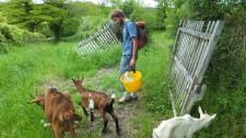 Workaway in France. Help with ecological projects in central France.