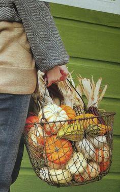 Fall basket ..