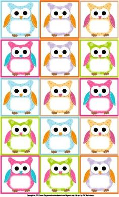 Continue Reading More Samples Free Printable Owl Classroom Decorations To Inspiring Designers. Owl Classroom Decor, Diy Classroom Decorations, Classroom Themes, Birthday Chart Classroom, Birthday Charts, Owl Labels, Flirt, Free Printables, Printable Labels