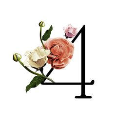 Table Number from The Wildflower Collection.