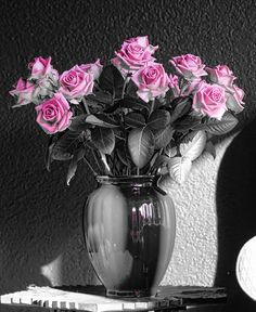 Roses pink (by Ton lع Jeune) [touch of pink roses]
