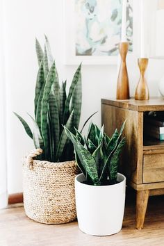 plant stand design ideas for indoor houseplants - page 38 of 67 - lo . plant stand design ideas for indoor houseplants - page 38 of 67 - lovein home. Modern Interior Design, Interior Design Living Room, Modern Interiors, Mid Century Interior Design, Asian Interior, Mid Century Design, Living Room Designs, Home Decor Accessories, Decorative Accessories