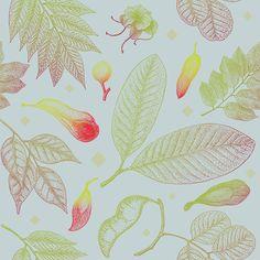 Tropical Hardwood Trees - original pattern available at patternbank #pattern #botanical #hardwood  #balsamo #merbau
