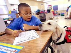Paws for Therapy: Dog Helps Autistic Children Focus, Behave in the Classroom