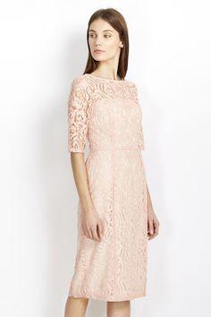 Blush Lace Panel Shift Dress #wallisfashion #SS16