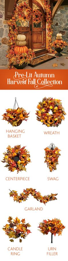 Packed with pumpkins, acorns, sunflowers, and more, our pre-lit fall-inspired collection will add stylish charm to your existing Halloween decor.
