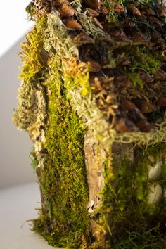SPRING SALE Rustic fairy cottage moss and bark fairy house Spring Sale, Fairy Houses, New Leaf, New Baby Products, Succulents, Cottage, Rustic, Homes, Etsy
