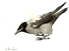 Crow Original watercolor painting 12 X 9 in black by ORIGINALONLY
