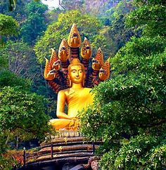 Google Image Result for http://www.buddha-buddhism.com/Buddha%2520Statue%2520at%2520Mae%2520Sot%2520Thailand.jpg