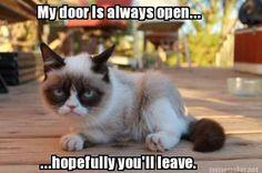 Open-Door Policy a la Grumpy Cat.