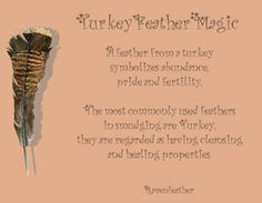 My Original Version of Turkey Feather Magic *Please check your local and federal guidelines for feather collection and possession! Animal Spirit Guides, Spirit Animal, Feather Meaning, Feather Symbolism, Animal Symbolism, Animal Medicine, Medicine Bag, Feather Art, Feather Signs