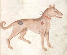 In the early fifteenth-century, Edward, Duke of York, wrote The Master of Game, which explains how dogs are to be used in hunting and taken care of. He also included a list of 1100 names that he thought would be appropriate for hunting dogs. They include Troy, Nosewise, Amiable, Nameles, Clenche, Bragge, Ringwood and Holdfast, from the always good medievalists.net, uncredited image.
