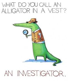 What do you call an Alligator in a vest - An investigator