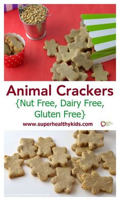 Animal Crackers Recipe. A gluten free animal cracker recipe! Share this one with your friends! http://www.superhealthykids.com/animal-crackers-nut-free-dairy-free-gluten-free/