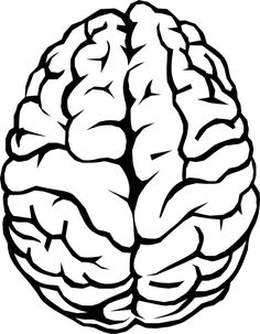 The human brain Vector Clip art Drawing Tips, Line Drawing, Human Brain Drawing, Brain Vector, Brain Pictures, Brain Illustration, Brain Art, Tattoo Outline, Stickers