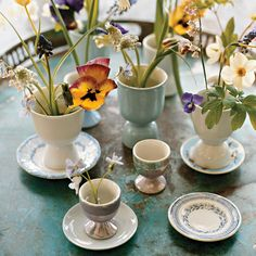 For an Easter centerpiece, arrange several eggcups holding spring flowers like pink lilies of the valley, species tulips, grape hyacinths, narcissus, violets, pansies, or bleeding-heart leaves on a tray.