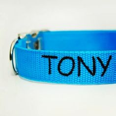 Obojek s vyšitým jménem od Blackberry   Collar with embroidered name by Blackberry #tony #embroidery #name #collar #blue #dog #pes #vysivka #jmeno #modra #blackberry