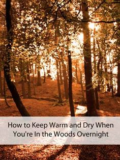 How to Keep Warm and Dry When You're In the Woods Overnight - Mom Prepares Survival Food, Camping Survival, Outdoor Survival, Survival Prepping, Emergency Preparedness, Survival Skills, Outdoor Camping, Emergency Preparation, Emergency Supplies